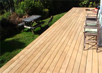 Deck & Carpentry